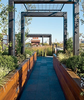 Three-foot-high ipe planters line a slate pathway that leads through the different areas on the roof, starting at the main entryway.