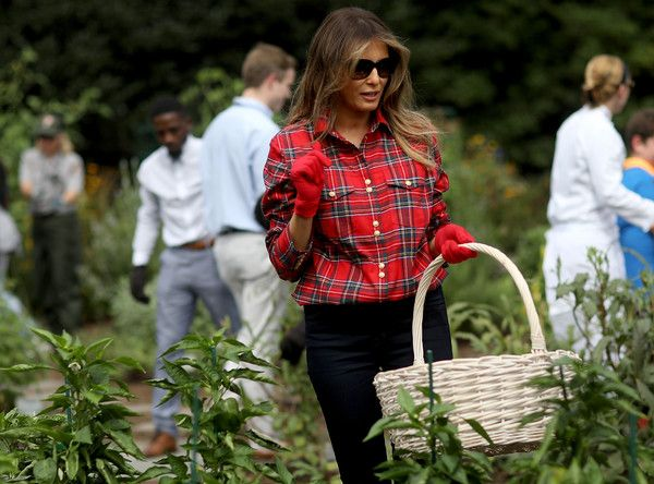 U.S. first lady Melania Trump joins children from the Boys and Girls Club of Washington in planting and harvesting vegetables in the White House Kitchen Garden September 22, 2017 in Washington, DC. The White House Kitchen Garden is a tradition started by former first lady Michelle Obama. - First Lady Melania Trump Holds White House Garden Event