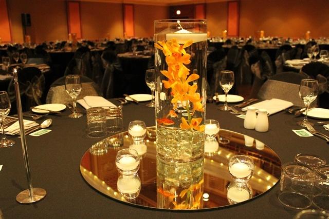 #goldfish #singaporeorchid