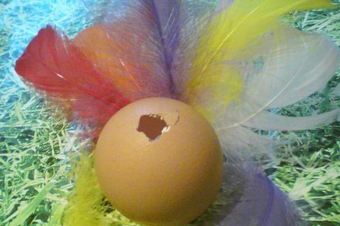 Vajíčko jen s jednou dírkou