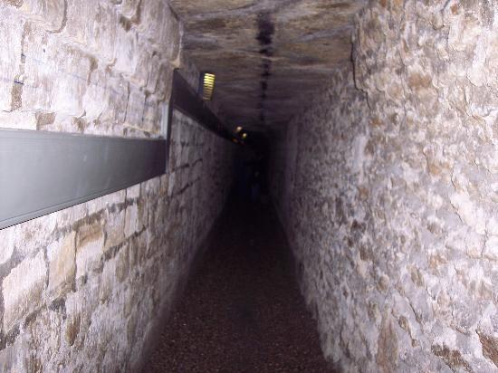 Die Katakomben von Paris (Les Catacombs)