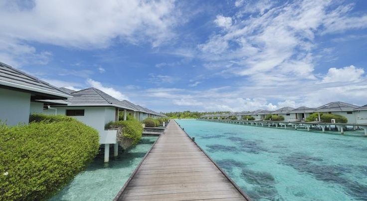 Maldives tour packages with family to water sports packages, Maldives fulfills your desire in every way possible. If you are planning to celebrate the world in shortest possible time, then plan a holiday tour to Maldives.