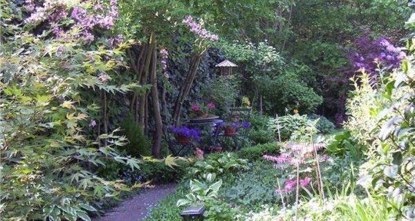 Tips voor een tuin in de schaduw | Bakker Hillegom
