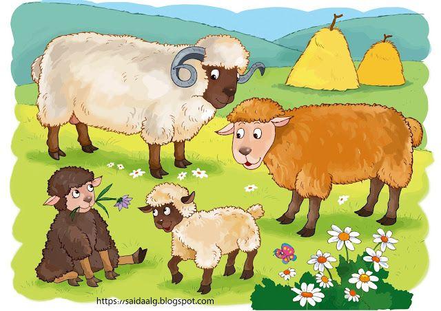 صور حيوانات المزرعة Farm Animals Farm Animals Animals Teddy Bear