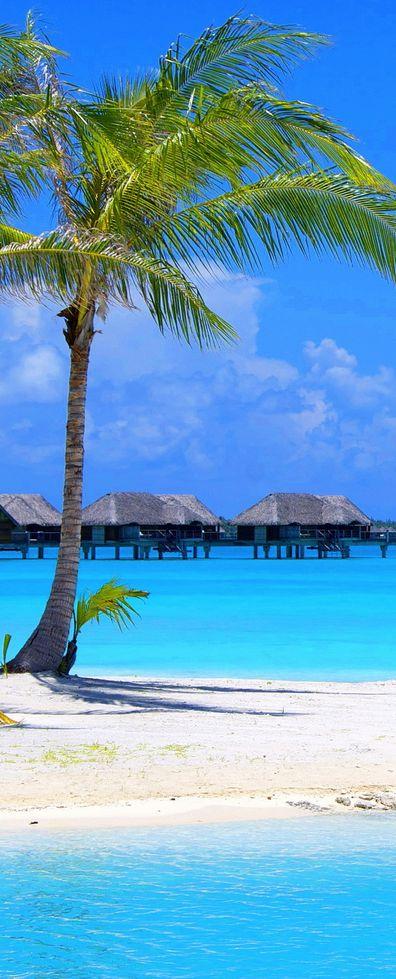 Fiji Islands ~ Intimately Rich & Colorful