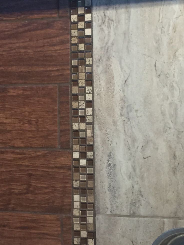 Transition Wood Floor To Tile Ideas: Tile Transition Strip