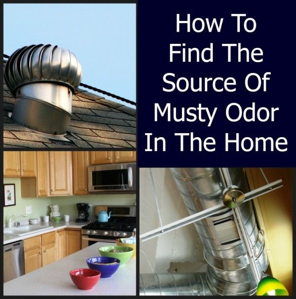 How to find the source of musty odor in the home clean - How to keep a bathroom smelling fresh ...