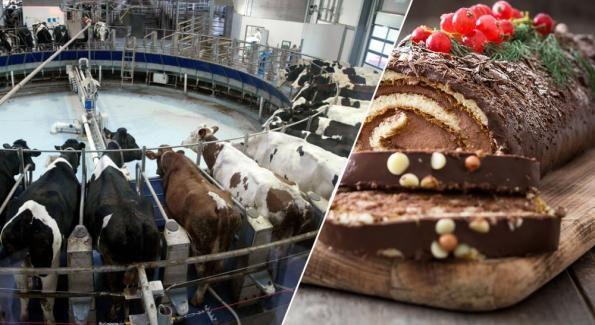 Dîtes non aux bûches de Noël au lait des 1000 vaches