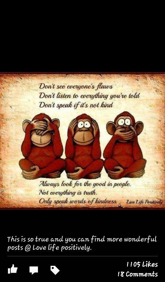 cute monkey quotes sayings