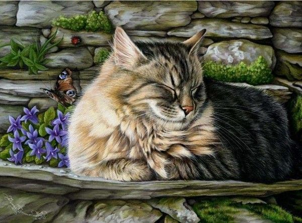 5/5 Art of irina garmashova ***also see this board it's amazing: http://www.pinterest.com/redst/how-to-colored-pencils/