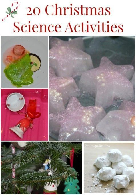 Holiday Science Learning Activitives