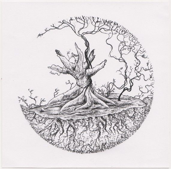 Grape vine drawing google search tree of life for Tattoo shops in salina ks