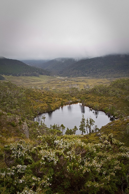 Wombat Pool in Cradle mountain, Tasmania