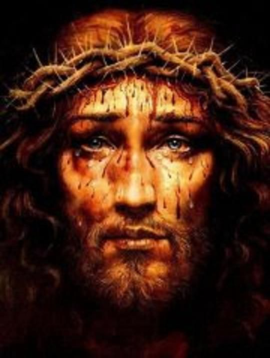 """""""I firmly wish that my Face reflecting the intimate pains of my Soul, the suffering and love of My Heart, be more honored! Whoever gazes upon me, already consoles me."""" (Jesus to Sister Pierina)"""