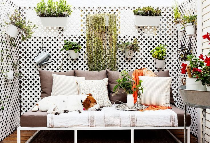Plant a vertical garden. The easiest way to hide unsightly neighboring balconies is to block the view with a vertical garden. Simply install a trellis, and hang away. Just make sure your building approves it before making significant changes.