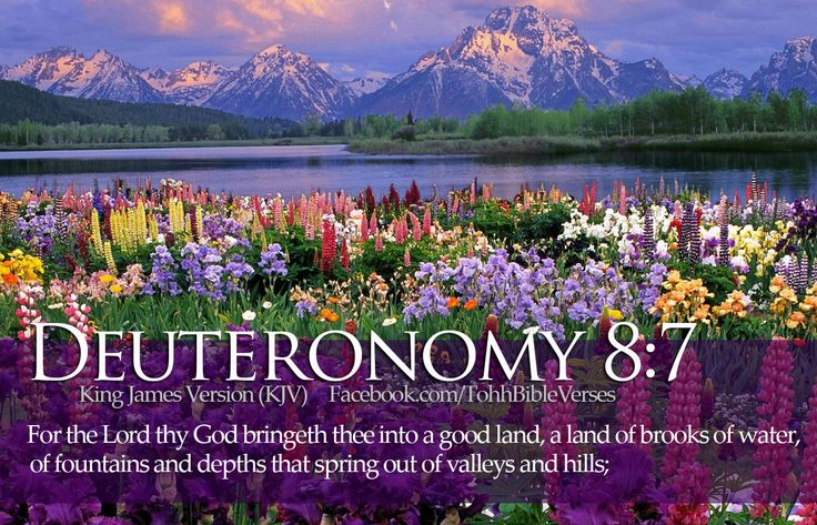 Beautiful Pictures with Bible Verses | Bible Verses Deuteronomy 8:7 Flowers River Wallpaper