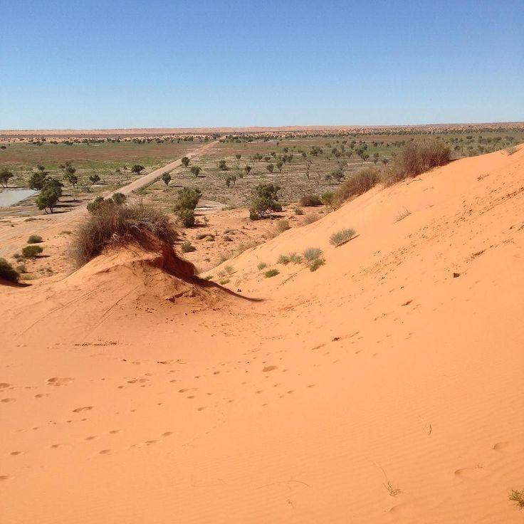 Big Red sand dunes #birdsville. by jacksjobs