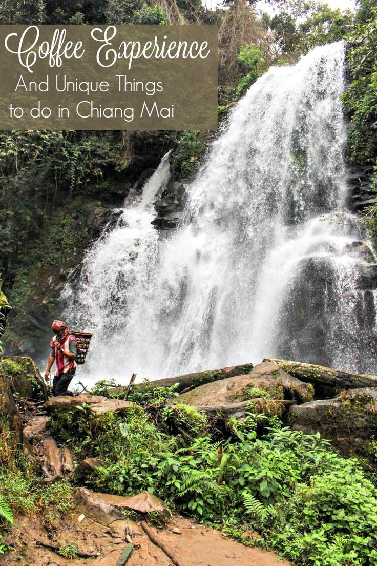 Roast your own coffee, trek through the mountains and meet the hill tribes. Discover unique things to do in Chiang Mai, Thailand. Tips on how to get there and where to stay in Chiang Mai.