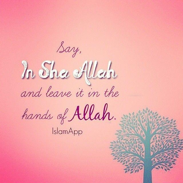Say inshAllah.   #Islam #Faith