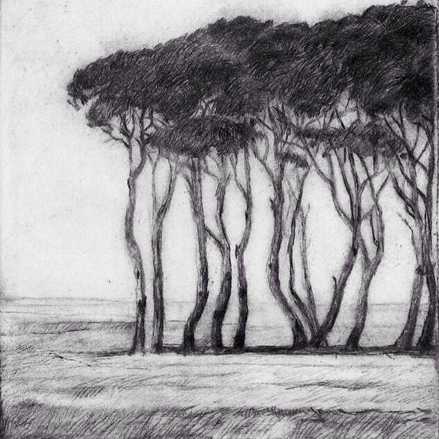 Moonahs. Etching. art. Follow on Facebook and Instagram #markcairnsartist