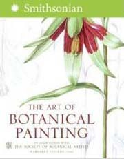 Margaret Stevens Artist Uk Botanical Painting