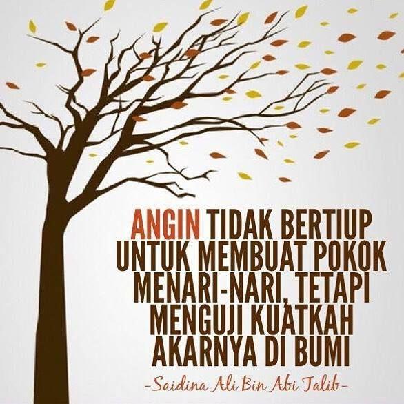 Angin tidak bertiup untuk buat pokok menari-nari tetapi menguji kuatkah akarnya di bumi.