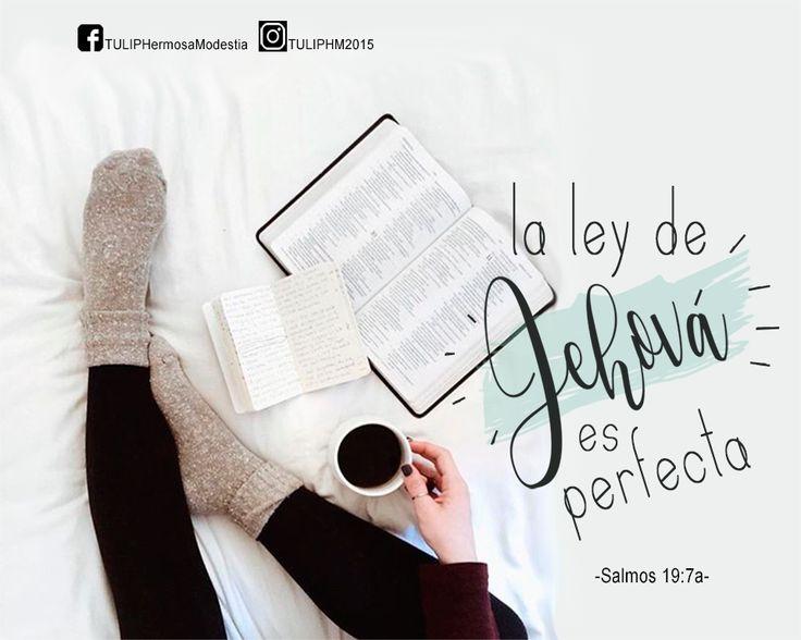 La ley de Jehová es perfecta. Salmos 19