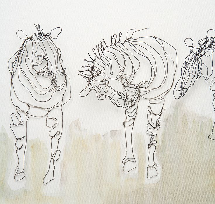 Contour Line Drawing With Wire : Quot line drawings with wire alice beasley alambre