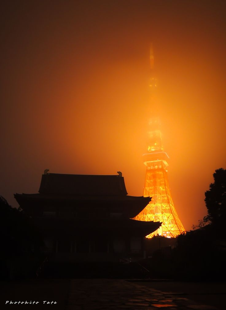 Really Great Shot of Tokyo Tower!  Surprisingly enough it is taken with #COOLPIX #P310!  Great Value, you can see it here:  https://www.buysmartjapan.com/index.php/en-us/product-index-K0000339833-f27b3c0a8003b3d890c1f7ee2e50986c.html?fbpg  #coolpix #tokyo #tokyotower #onlineshopping #buyonline #japancamera