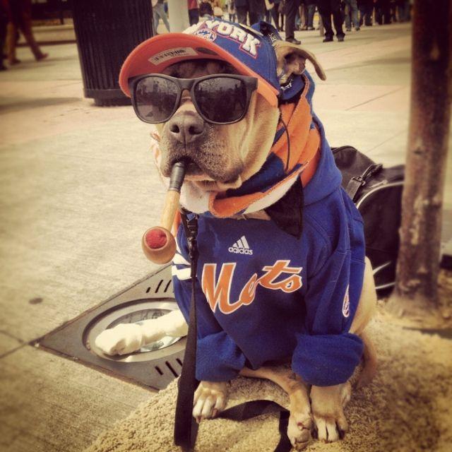 NY Mets babyy :)
