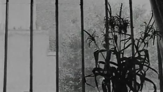 Elsa la Rose, court-métrage d'Agnès Varda sur Aragon et Elsa Triolet