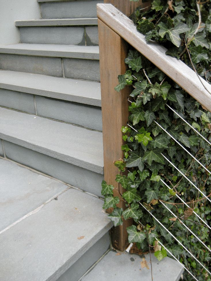 bluestone-pavers-steps-stairs-wire-banister-railing-WEDesign_Hamptons_4-gardenista