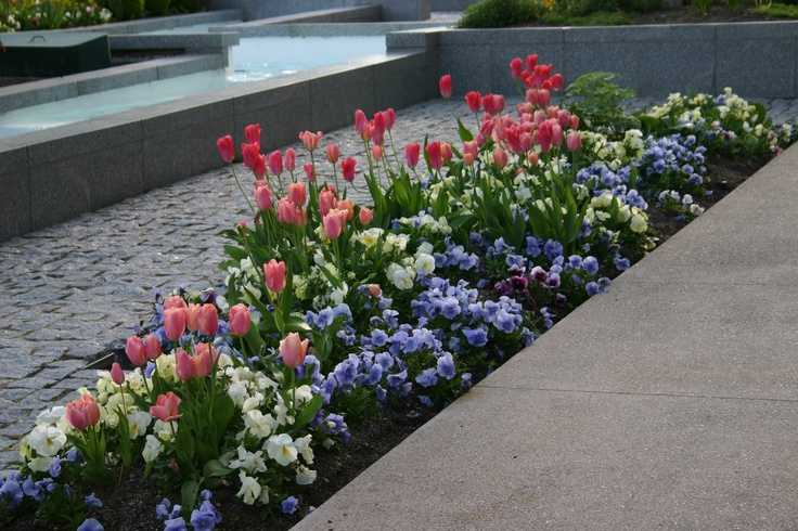 long narrow bed design flower bed palette pinterest