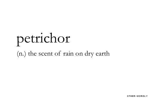 """Petrichor: (n) the scent of rain on dry earth."" A word I never knew for a sensation I love."