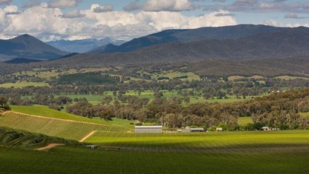This lush valley is just three hours north-east of Melbourne, full of farms, vineyards and the flavours of Italy.