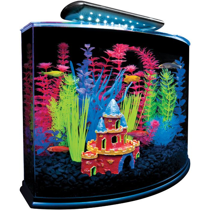 17 best images about glofish on pinterest glow unique for Glow in the dark fish walmart
