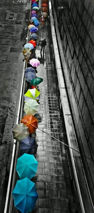 A splash of color in the rain! I would be the guy with no umbrella enjoying the rain.