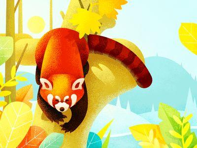 The cute red panda illustration