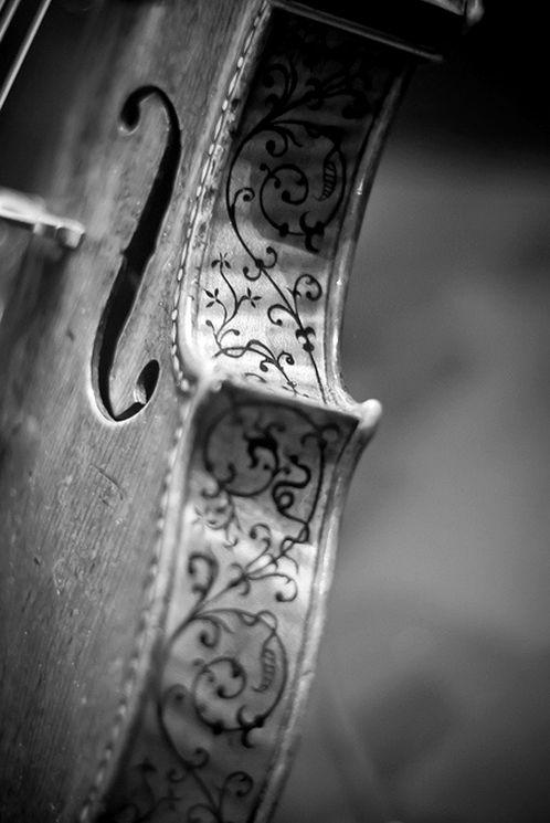 Un violon aux éclisses travaillées. Retrouvez des cours de #guitare d'un nouveau genre sur https://www.mymusicteacher.fr !