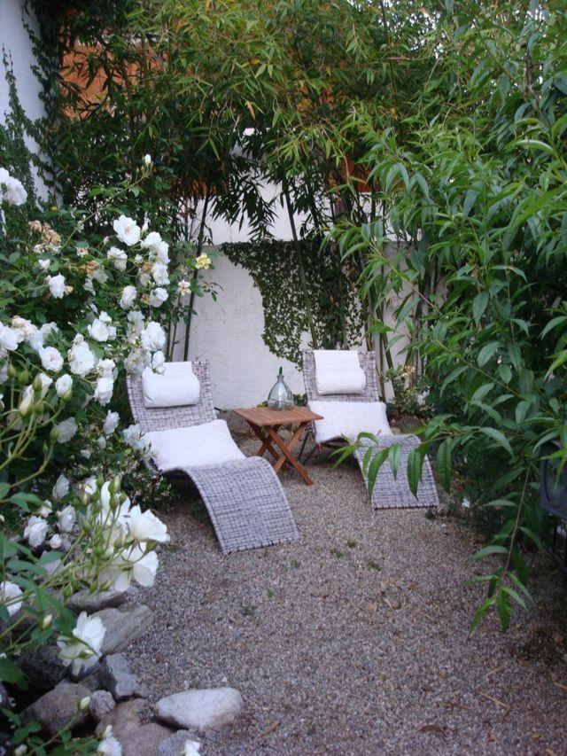 Sommer Liegesessel Hohe Bäume weiße Rosen Kletterpflanzen