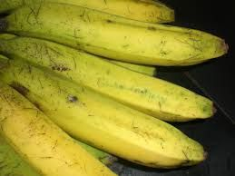 THERAPY AND CURE DIABETIC: Banana Fruit Efficacious for Heart Health, Cholest...