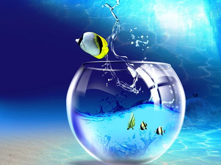 3D Animated Background for Desktop Fish Jumping