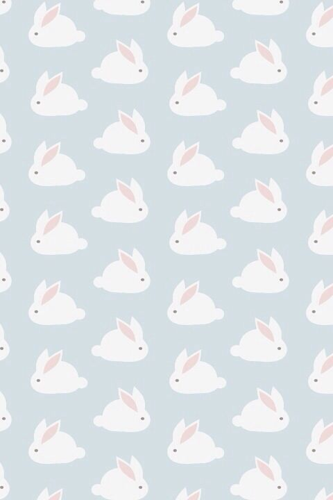 little white bunny rabbits iPhone wallpaper background