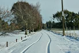 Image result for invercargill snow