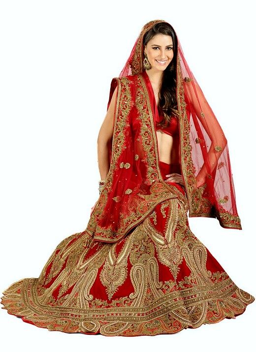 Most Expensive Indian Wedding Dress – As in all clothing, it is also true that there is a very large variation between dresses.