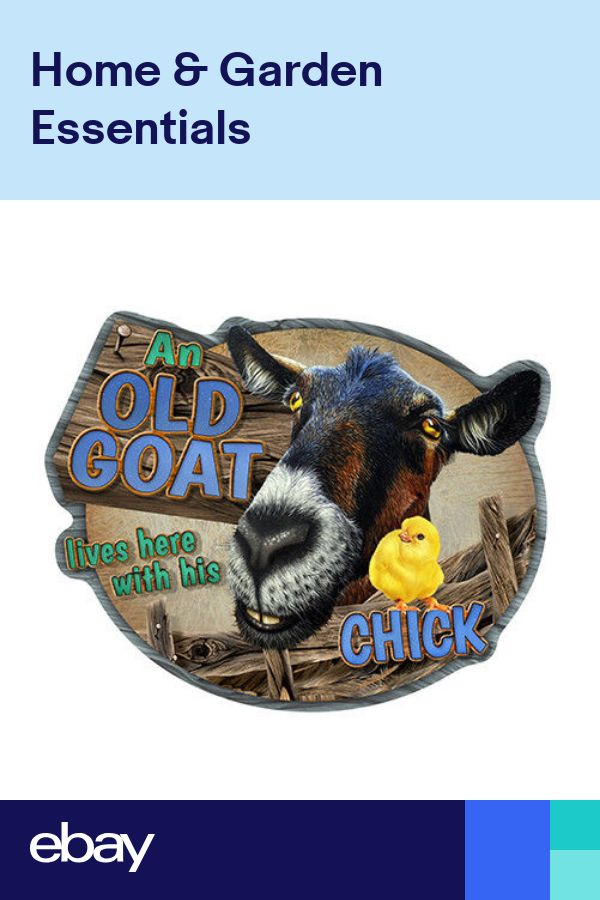 Old Goat And His Chick Novelty SignFunny Home Décor Garage Wall Gag Gift
