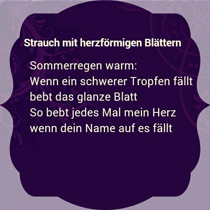 Erich Fried ♡ Strauch mit herzförmigen Blättern