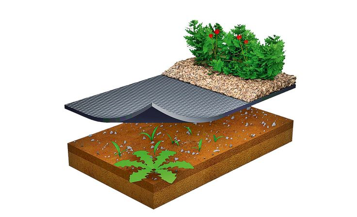 Pflanzenvlies verhindert Unkraut | Pflanzenschutz | selbst.de