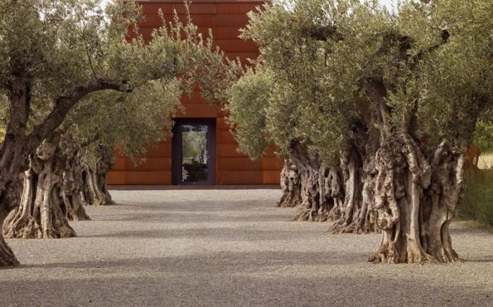 Stone Edge Farm: A Peaceful Retreat in Northern California Gardenista; http://gardenista.com/posts/stone-edge-farm-a-peaceful-retreat-in-northern-california