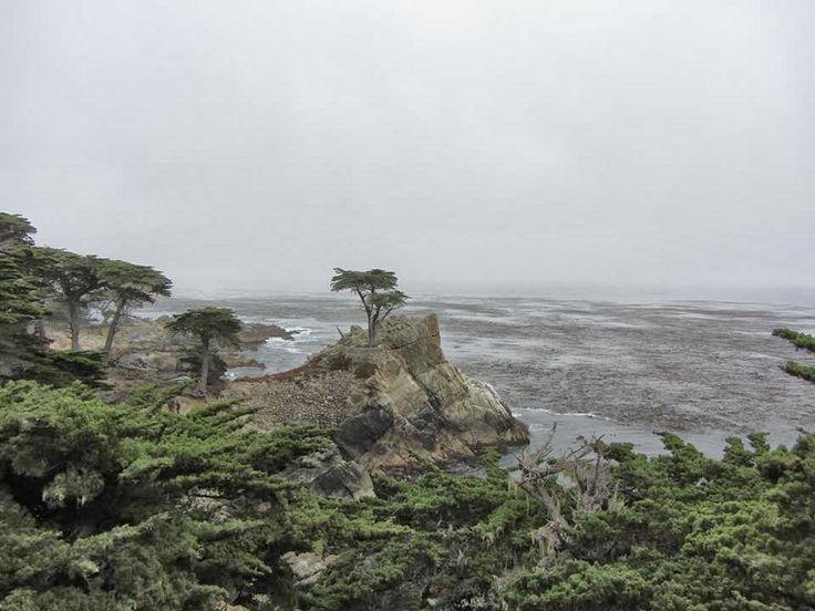 Pebble Beach, Monterey, costa della California.  #PebbleBeach, #Monterey